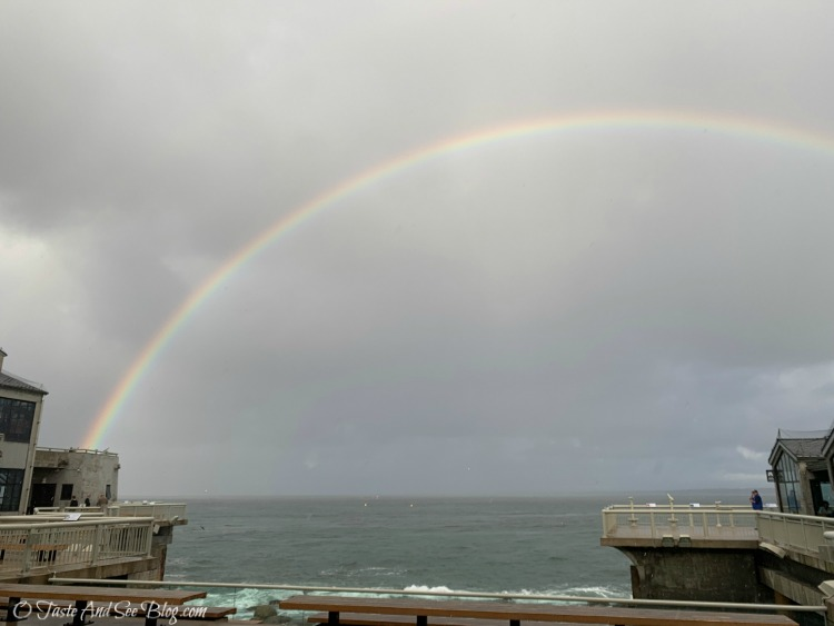 Monterey Bay Aquarium Rainbow